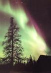 Aurora Borealis - Postcard Monday