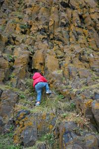 Lilah does some exploring. Photo by Jenn.